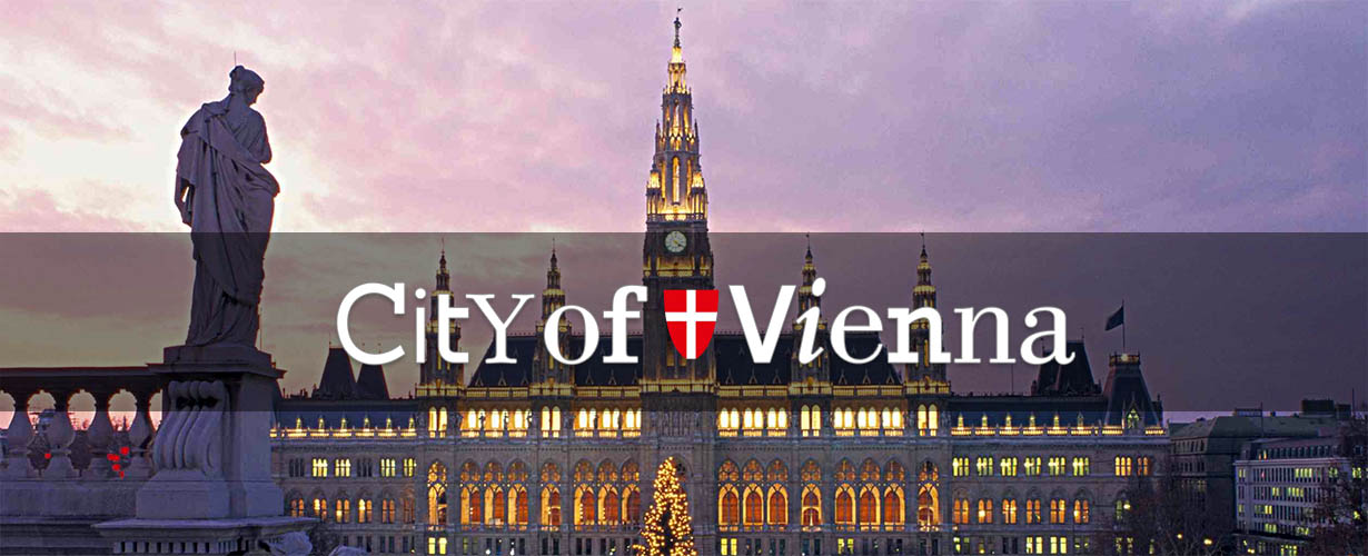 Vienna city cover photo
