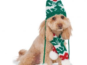 christmas-knit-pom-pom-hat-and-scarf-pet-costume
